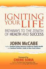 Igniting Your Life:  Pathways to the Zenith of Health and Success