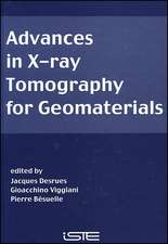 Advances in X–ray Tomography for Geomaterials