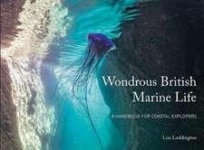 Ludington, L: Wondrous British Marine Life