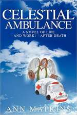 Celestial Ambulance