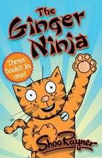 The Ginger Ninja