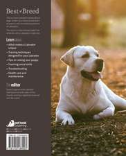 The Labrador:  Your Essential Guide from Puppy to Senior Dog