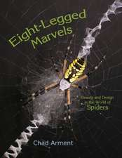 Eight-Legged Marvels:  Beauty and Design in the World of Spiders