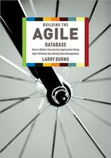 Building the Agile Database
