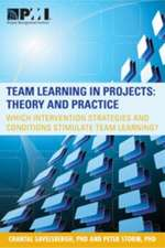 Team Learning in Projects:  Theory and Practice