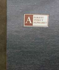 A Forest Insect Alphabet [With CD (Audio)]:  The New London School Explosion