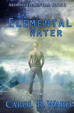 An Elemental Water:  Aaron and Jake Time Travel Adventures