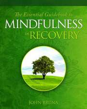The Essential Guidebook for Mindfulness in Recovery