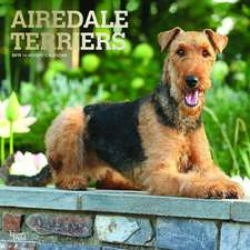 Airedale Terriers 2019 Square Wall