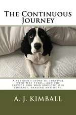The Continuous Journey