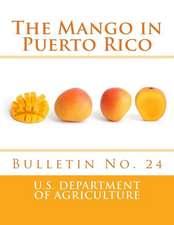 The Mango in Puerto Rico