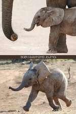 Baby Elephants Journal