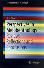 Perspectives in Meiobenthology: Reviews, Reflections and Conclusions