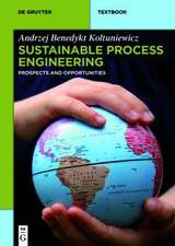 Sustainable Process Engineering: Prospects and Opportunities
