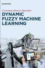 Dynamic Fuzzy Machine Learning