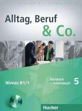Alltag, Beruf & Co. 5.Kursbuch + Arbeitsbuch mit Audio-CD zum Arbeitsbuch