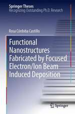 Functional Nanostructures Fabricated by Focused Electron/Ion Beam Induced Deposition