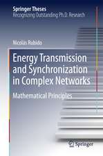 Energy Transmission and Synchronization in Complex Networks: Mathematical Principles
