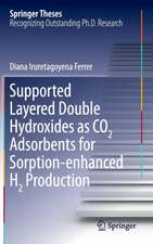 Supported Layered Double Hydroxides as CO2 Adsorbents for Sorption-enhanced H2 Production