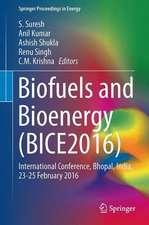 Biofuels and Bioenergy (BICE2016)