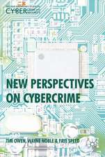 New Perspectives on Cybercrime