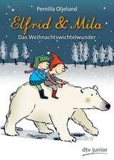 Elfrid & Mila Das Weihnachtswichtelwunder