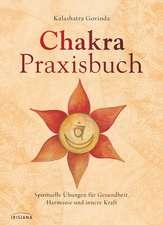 Chakra-Praxisbuch