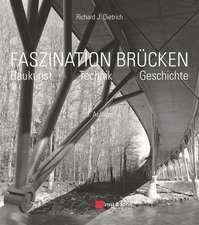 Faszination Brucken: Baukunst. Technik. Geschichte.