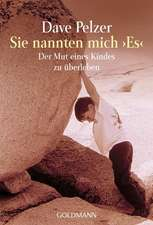Sie Nannten Mich Es = A Child Called It:  Parallel Pericopes - Special Volume Regarding the Synoptic Gospels