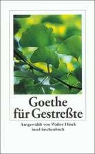 Goethe für Gestreßte