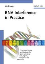 RNA Interference in Practice: Principles, Basics, and Methods for Gene Silencing in C. elegans, Drosophila, and Mammals