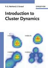 Introduction to Cluster Dynamics