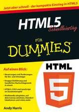 HTML5 Schnelleinstieg für Dummies