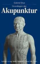 Grundlagen Der Akupunktur:  Herstellung Und Charakterisierung