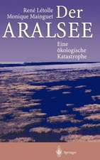 Der Aralsee: Eine ökologische Katastrophe