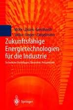 Zukunftsfähige Energietechnologien für die Industrie: Technische Grundlagen, Ökonomie, Perspektiven