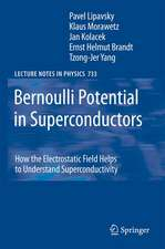 Bernoulli Potential in Superconductors: How the Electrostatic Field Helps to Understand Superconductivity