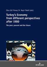 Turkey's Economy from different perspectives after 1980