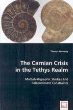 The Carnian Crisis in the Tethys Realm