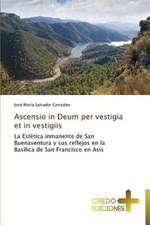 Ascensio in Deum Per Vestigia Et in Vestigiis:  Don, Identidad y Mision