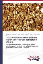 Tratamiento Oxidante Alcalino de Un Concentrado Refractario de Oro:  El Discurso Kirchnerista
