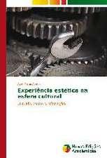 Experiencia Estetica Na Esfera Cultural:  Abordagem Teorica E Pratica