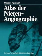 Atlas der Nierenangiographie