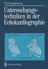 Untersuchungstechniken in der Echokardiographie: Transthorakale, transösophageale Schnittebenen