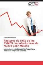 Factores de Exito de Las Pymes Manufactureras de Nuevo Leon Mexico:  DOS Siglos Despues