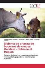 Sistema de Crianza de Becerros de Cruces Holstein - Cebu En El Tropico