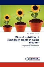 Mineral  nutrition of sunflower plants in saline medium