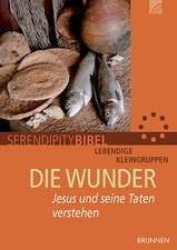 Serendipity bibel: Die Wunder