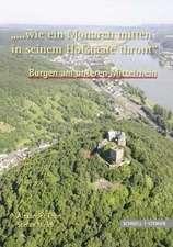 Burgen Am Unteren Mittelrhein '... Wie Ein Monarch Mitten in Seinem Hofstaate Thront':  Origini, Sviluppo, Apparati Decorativi, Documentazione Epigrafica