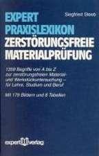Expert Praxislexikon zerstörungsfreie Materialprüfung
